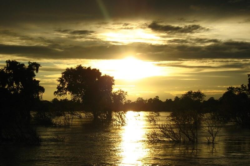 Kratie Irriwaddy dolfijnen Mekong rivier