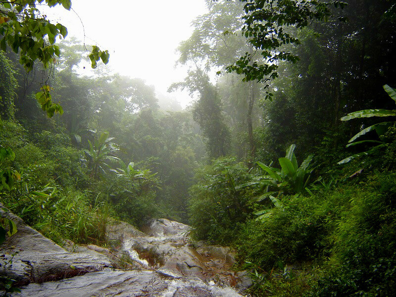 Regentijd in Pai