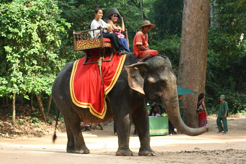 Olifant rijden bij Angkor