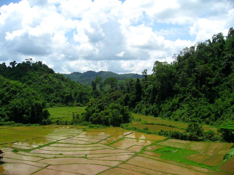 Chiang Rai Landschap
