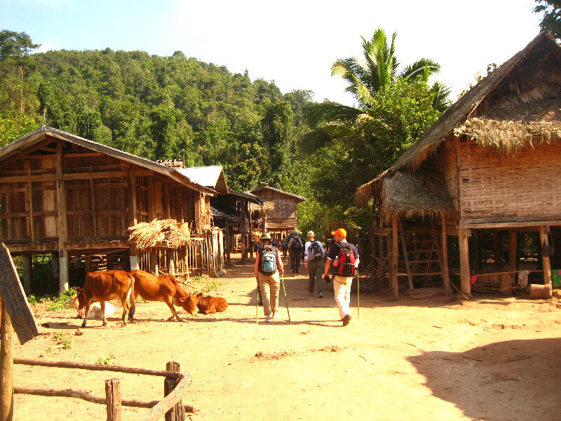 Luang Namtha trekking