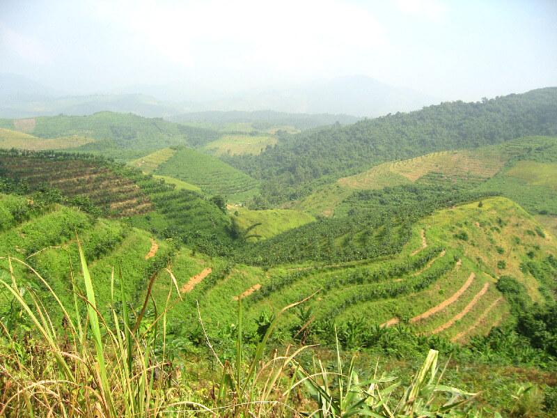 Luang Namtha berglandschap