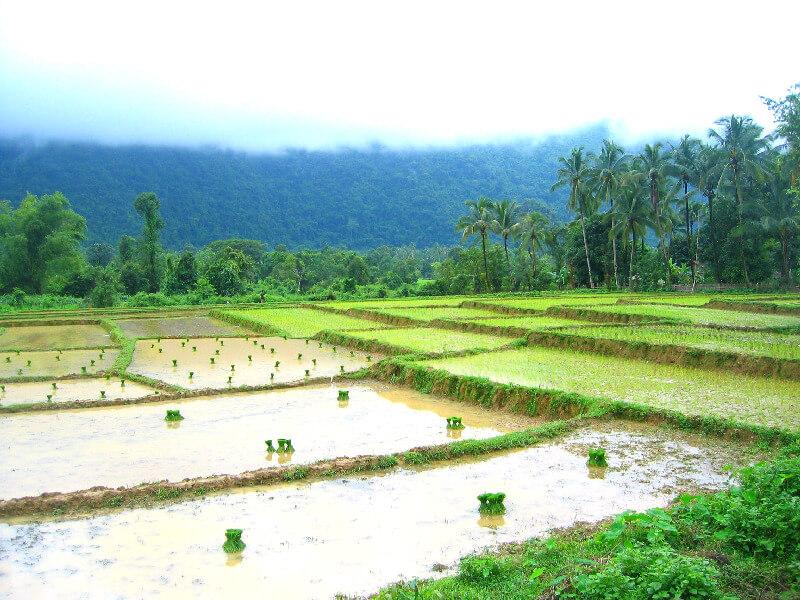 Backpacken in Vang Vieng platteland