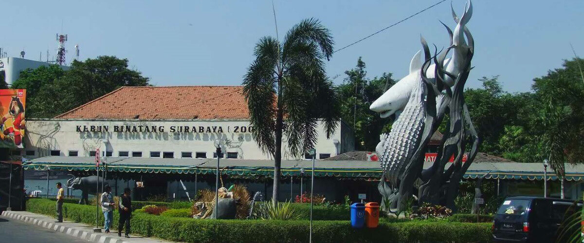 Surabaya reistips